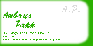 ambrus papp business card